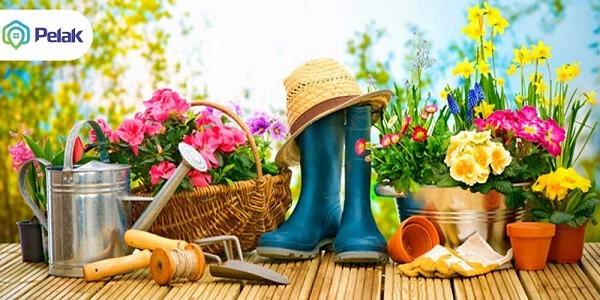 بهارو بیار به خونه!