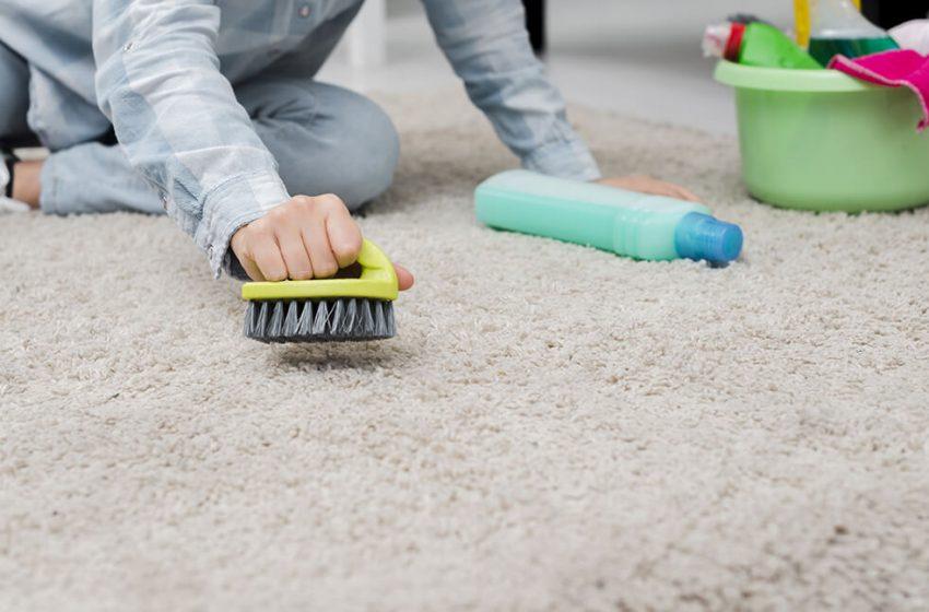 خدمات مبل شویی آنلاین و قالیشویی چگونه در نگهداری از فرش و مبل به شما کمک میکند؟